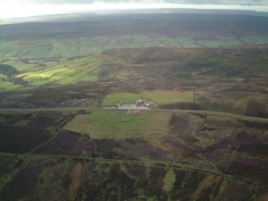 aerial isolated lion inn